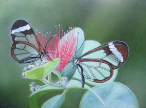 Laatste nieuwe werk: Vlinders, 18 x 24 cm, olieverf op paneel